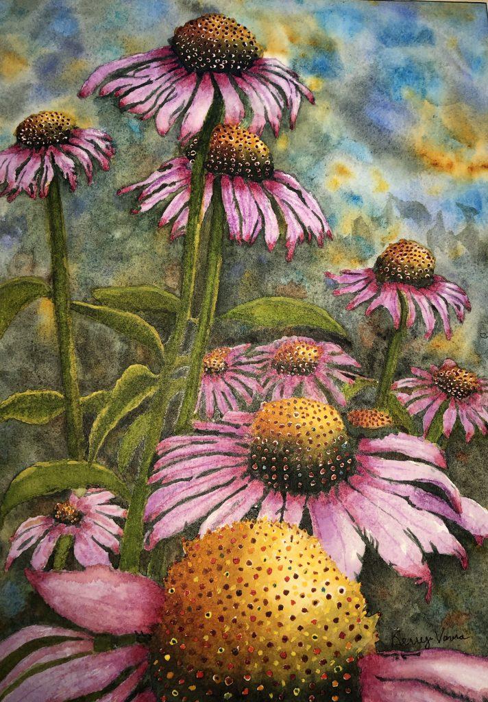 "Kerry Vavra ""Purple Coneflower"" Watercolor"