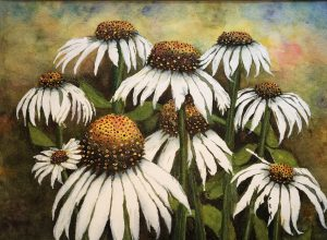 Kerry Vavra White Coneflower Watercolor