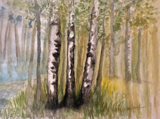 """""""White Birch""""<br> Watercolor<br> 16x20"""